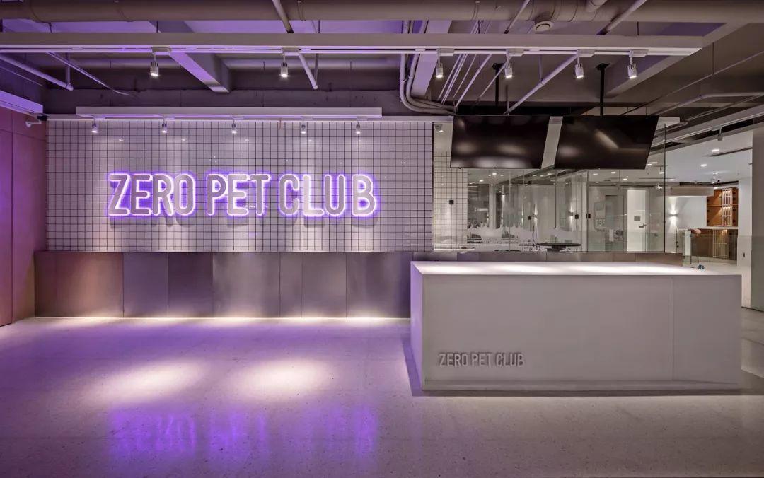【案例分享】Zero Pet club-panDOMO Loft
