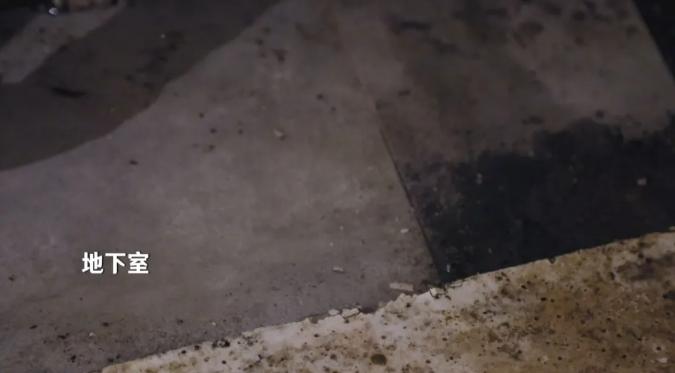 panDOMO亮相《梦想改造家》新篇 | 从潮湿地下室到惊艳底楼复式